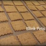 Blink Cracker Cookies