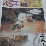 China Press 2013