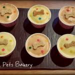 Pupcake - 2