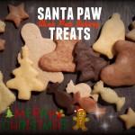 Santa Paw Treats